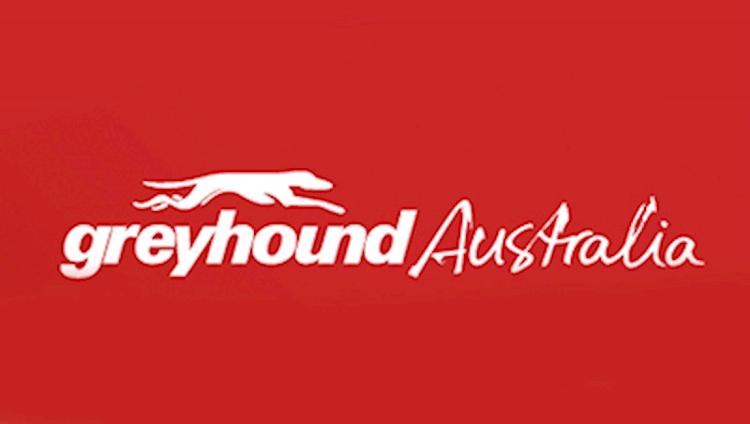 Greyhound Melbourne to Sydney Short-Hop - Sydney Central Backpackers